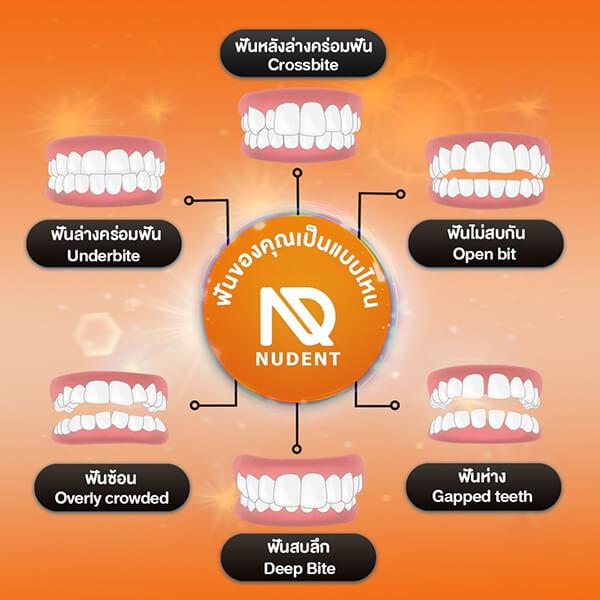 Nudent-Membership 8